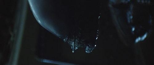 Xenomorph - Alien Alien AvPGalaxy Review