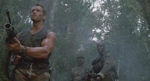 Arnie Predator Review