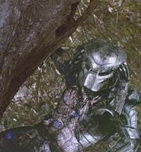 Predator Predator Trivia