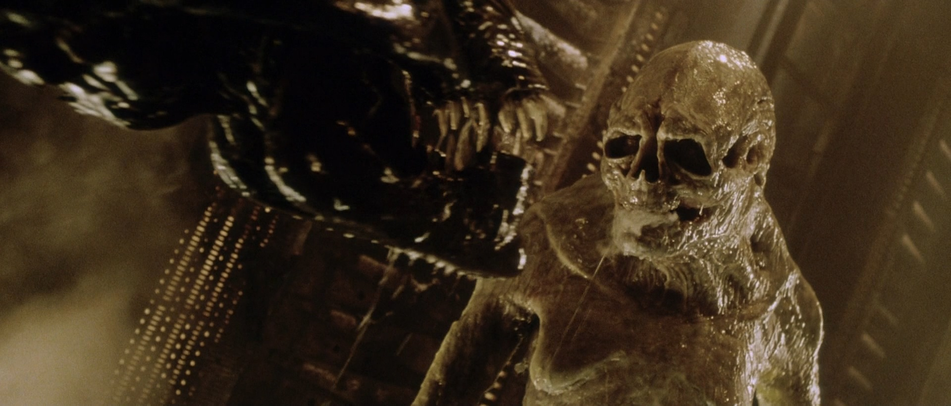 Newborn - Alien Resurrection - Alien Life Cycle - AvPGalaxy