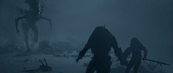 Queen Alien - AvP Blu-Ray Review AvP Blu-Ray Review