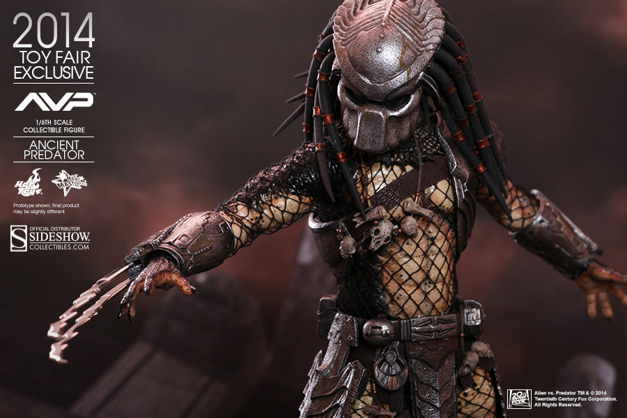 Ancient Predator Hot Toys Sideshow Collectibles Avpgalaxy