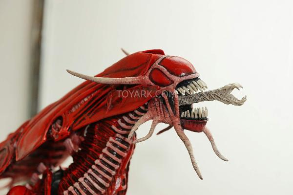 080715_05 NECA Predator Series 14 - Aliens vs. Predator