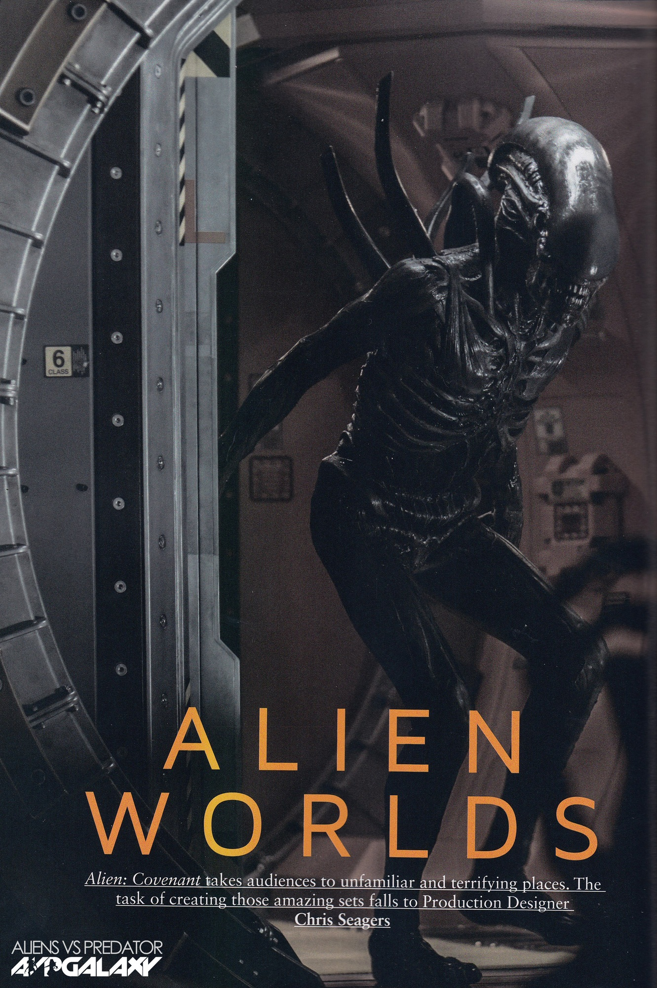 Myelopathy, radiculopathy, and peripheral