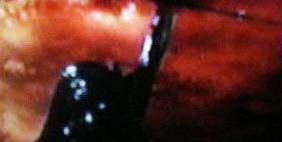 20040727_8 PG13 TV Spot For Download