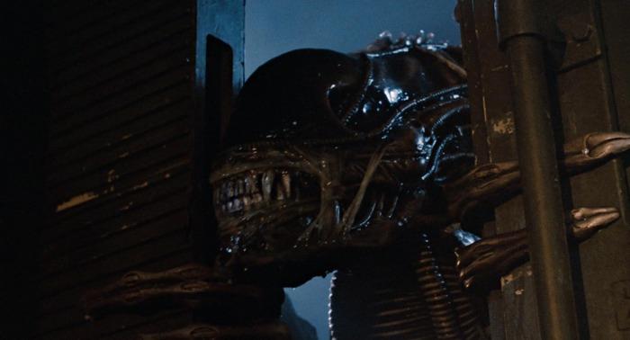 Xenomorph Aliens Aliens
