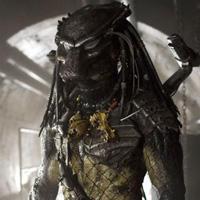 Wolf Predator AvP Requiem Trivia