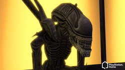 AvP Costumes on PSN