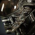 Alien Big Chap Sideshow Collectibles