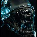 Alien Warrior Bust Sideshow Collectibles