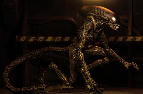 171114_01 NECA Aliens Series 3 Pictures