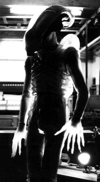 The concept of a transparent Alien was explored in the first film. The Creatures of Alien: Paradise Lost?