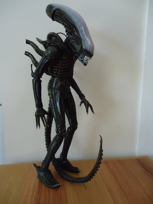 NECA 40040 Scale Alien Figure Review AvPGalaxy Gorgeous Neca 1 4 Display Stand