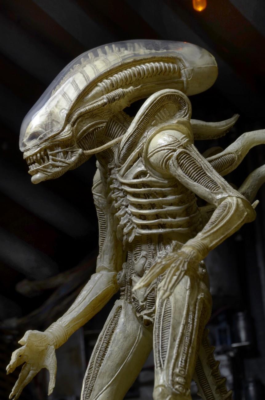 alien - photo #9