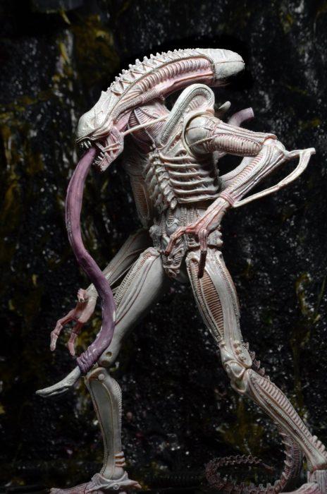 Albino Alien NECA Reveals Aliens Series 9 - Vasquez, Frost & Albino Alien