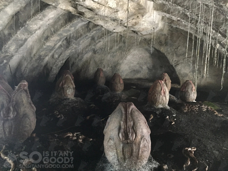 28102016_04 Leaked Alien: Covenant Set Pictures Show Film's New Creatures (And More)