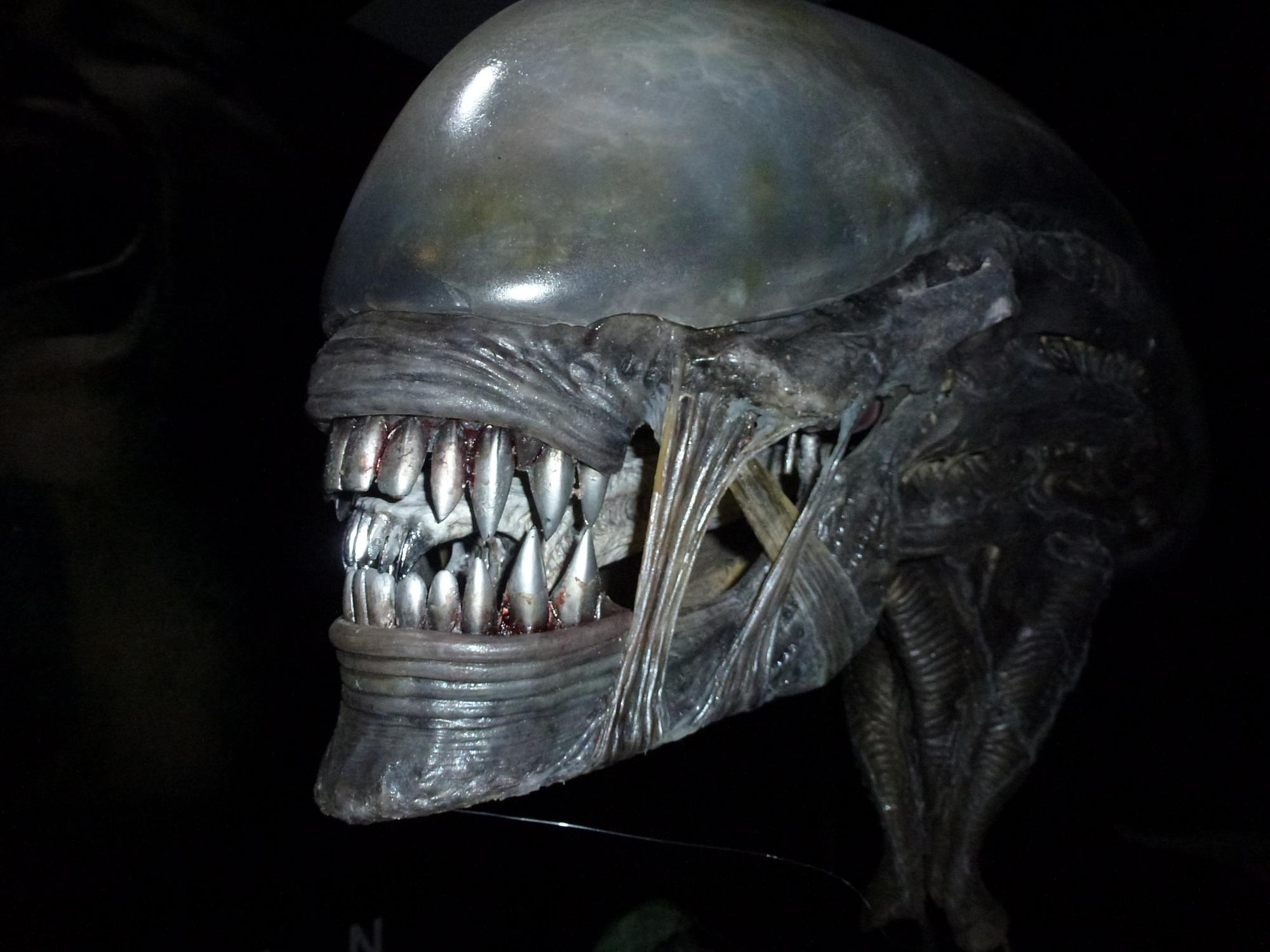 alien - photo #20