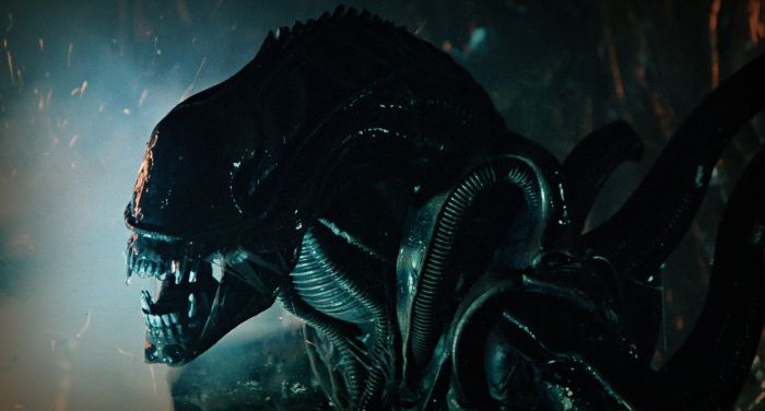 Is Alien: Blackout The Upcoming Alien Game?