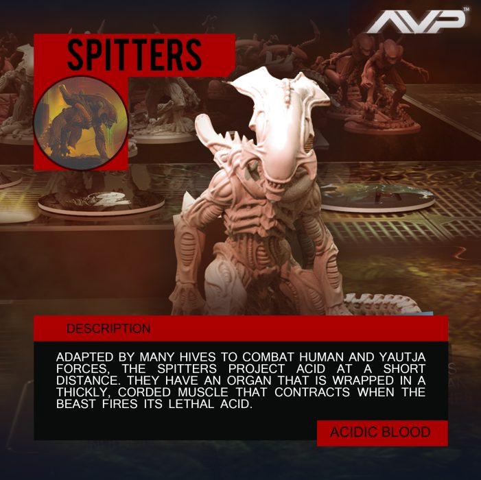 1x1 - avp hlz - Spitter 1a