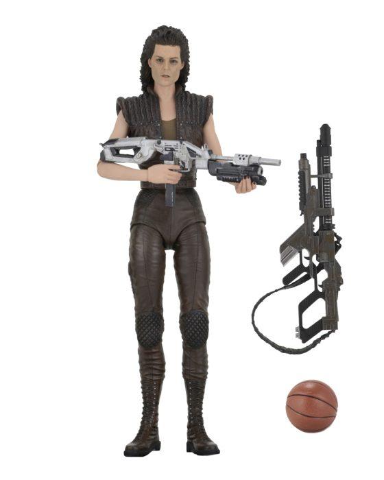 Ripley 8