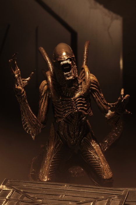 Alien Resurrection Warrior
