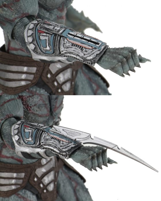 Assassin Predator