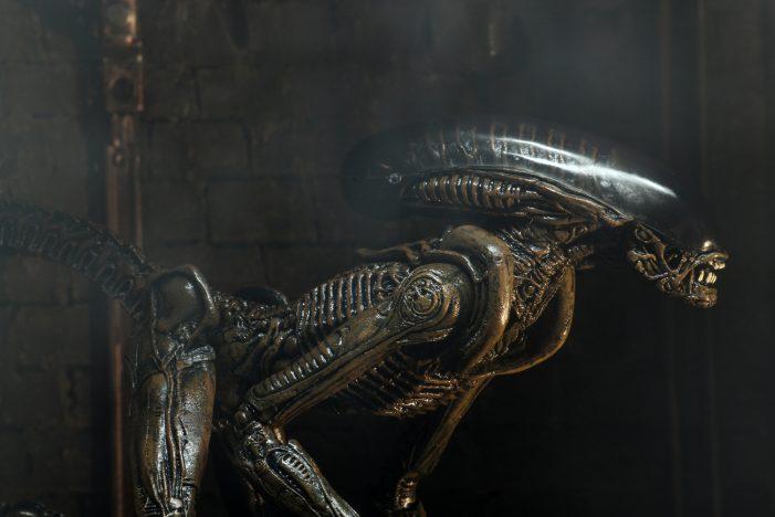 alien-3-dog-05
