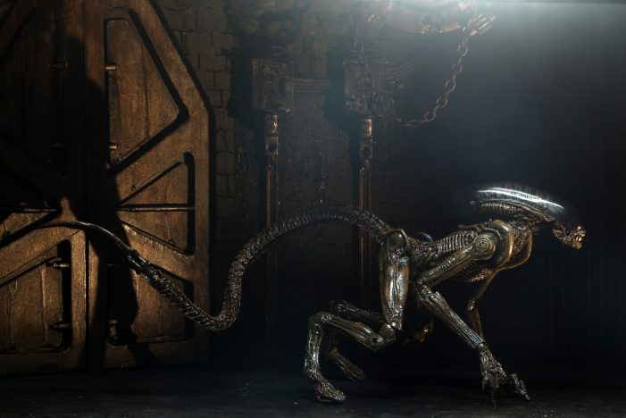 alien-3-dog-08