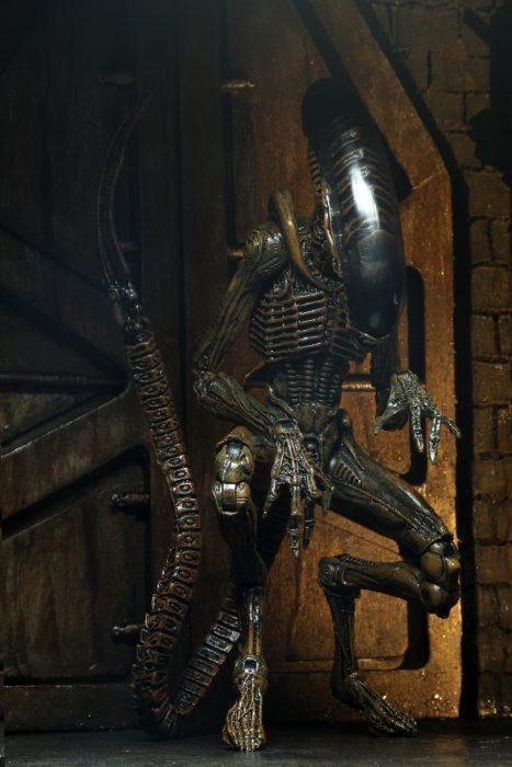 alien-3-dog-09