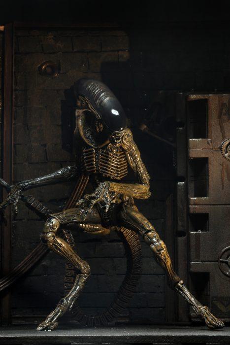 alien-3-dog-10