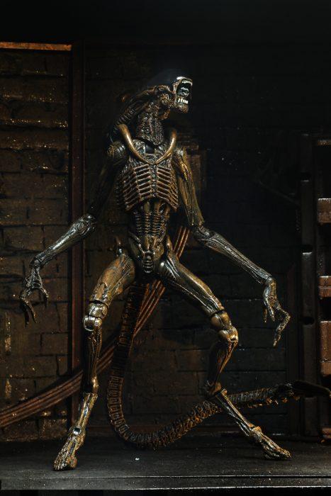 alien-3-dog-11