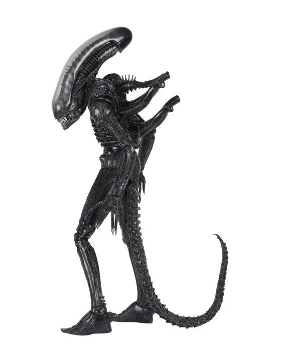 alien-40th-03