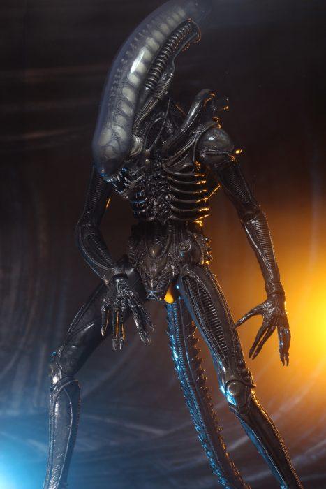 alien-40th-05
