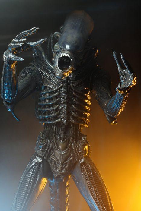 alien-40th-06