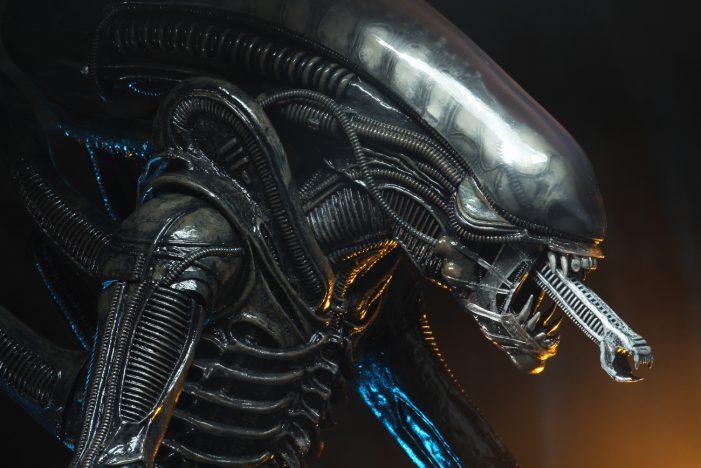 alien-40th-11
