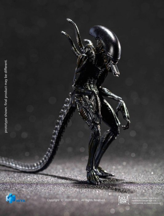 Hiya-AvP-Alien-Warrior-005