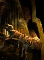 Stephen Youll Interview