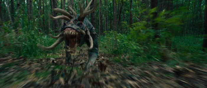 Tracker Predator