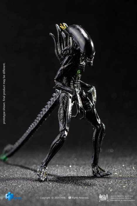 Hiya-Toys-AvP-Blowout-Alien-Warrior-002