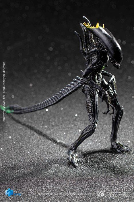 Hiya-Toys-AvP-Blowout-Alien-Warrior-003